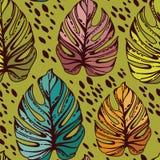 Nahtloses Muster mit monstera Blättern Stockfotografie