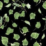 Nahtloses Muster mit Niederlassungen und Blättern der Linde, Aquarellmalerei Lizenzfreie Stockfotos