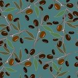 Nahtloses Muster mit Oliven im Grün Stockbilder