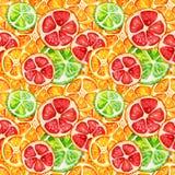 Nahtloses Muster mit Orange, Pampelmuse und Kalk stockfotografie