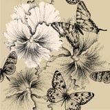Nahtloses Muster mit Pansies und Schmetterlingen. Vec Stockfotografie