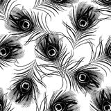 Nahtloses Muster mit Pfau versieht Vektorillustration mit Federn Stockfotos