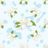 Nahtloses Muster mit Plumeria blüht auf blauem Hintergrund Stockbild