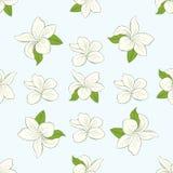 Nahtloses Muster mit Plumeriablumen auf Hintergrund Lizenzfreies Stockfoto