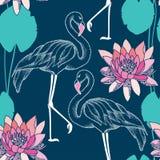 Nahtloses Muster mit punktiertem Flamingo und rosa Seerosen Lizenzfreies Stockbild