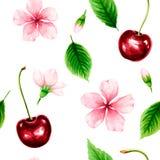 Nahtloses Muster mit reifer Kirsche, Grünblättern und rosa Blumen vektor abbildung
