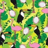 Nahtloses Muster mit rosa Flamingos, Tukan, Grünblätter und Drache tragen Früchte Design für Gewebe, Dekor, Karte Stockfotos