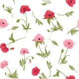 Nahtloses Muster mit rosa und roter Mohnblume blüht Lizenzfreie Stockfotografie
