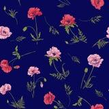 Nahtloses Muster mit rosa und roter Mohnblume blüht in botanischem St. Stockfoto