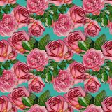 Nahtloses Muster mit rosafarbenen Rosen lizenzfreie stockbilder