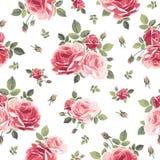 Nahtloses Muster mit Rosen Trocknen Sie Blätter einer Anlage auf dem alten befleckten grungy Papier vektor abbildung
