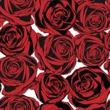 Nahtloses Muster mit roten Rosen Vektor Stockfoto