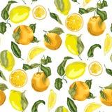 Nahtloses Muster mit saftigen Zitronen und Orangen, Scheiben und circl Lizenzfreies Stockbild