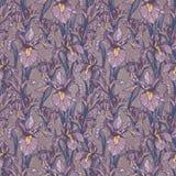 Nahtloses Muster mit schöner Iris blüht, Art- DecoArt Stockbild