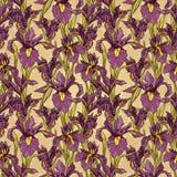 Nahtloses Muster mit schöner Iris blüht, Art- DecoArt Stockfotografie