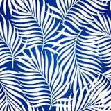 Nahtloses Muster mit Schattenbildern der Palme verlässt im Schwarzen auf weißem Hintergrund Lizenzfreie Stockbilder
