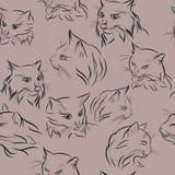 Nahtloses Muster mit Schattenbildern von Porträts von Katzen, Schwarzes, erblassen - Rosa Lizenzfreie Stockbilder
