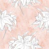 Nahtloses Muster mit Schwarzweiss-Blumen Lizenzfreie Stockfotografie