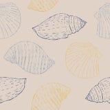 Nahtloses Muster mit Skizzen-Muscheln Stockfoto