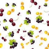 Nahtloses Muster mit Sommerbeeren der Aprikose, der Korinthe und der Kirsche vektor abbildung