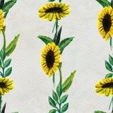 Nahtloses Muster mit Sonnenblumen Stockbilder