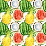 Nahtloses Muster mit tropischen exotischen Früchten Ananas-, Wassermelonen- und Kokosnussscheibe Lizenzfreie Stockfotografie