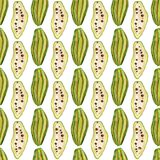Nahtloses Muster mit tropischen exotischen Früchten Kakaofruchtscheibe auf weißem Hintergrund Lizenzfreies Stockbild