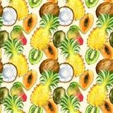 Nahtloses Muster mit tropischen exotischen Früchten Kiwi-, Mango-, Ananas- und Kokosnussscheibe Lizenzfreie Stockfotos