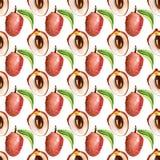 Nahtloses Muster mit tropischen exotischen Früchten Litschischeibe auf whiye Hintergrund Stockfoto
