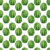 Nahtloses Muster mit tropischen exotischen Früchten Wassermelone auf weißem Hintergrund Stockfotografie