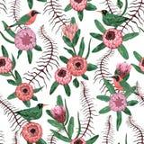 Nahtloses Muster mit tropischen Vögeln, Liane, Proteablumen und Blättern Exotischer botanischer Hintergrund lizenzfreie abbildung