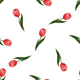 Nahtloses Muster mit Tulpen Lizenzfreies Stockfoto