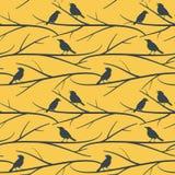 Nahtloses Muster mit Vögeln auf Niederlassungen vector eps8 Stockfotos