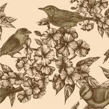 Nahtloses Muster mit Vögeln und blühenden Flammenblumen. Stockfotografie