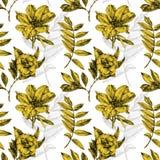 Nahtloses Muster mit verschiedenen Blumen und den Anlagen eigenhändig gezeichnet Stockbilder