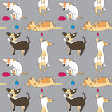 Nahtloses Muster mit verschiedenen Hunden Lizenzfreie Stockfotos