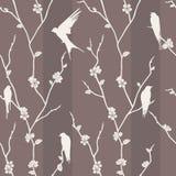 Nahtloses Muster mit Vogel auf Kirschblüte-Niederlassungen lizenzfreie stockfotografie