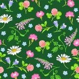 Nahtloses Muster mit wilden Blumen stock abbildung