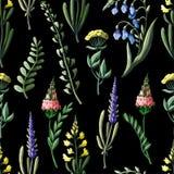 Nahtloses Muster mit wilden Blumen Auch im corel abgehobenen Betrag Stockbilder