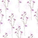 Nahtloses Muster mit wilden Blumen auf weißem Hintergrund Stockfoto