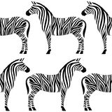 Nahtloses Muster mit Zebraschattenbild Lizenzfreies Stockbild