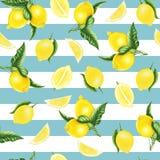 Nahtloses Muster mit Zitronen und Blättern und Hälfte der Zitrone, Aquarellmalerei stock abbildung