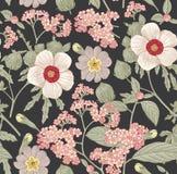 Nahtloses Muster Realistische lokalisierte Blumen Zeichnungs-Stich Vektor hibisc primavera Hibiscus des Weinlesehintergrundes hel stock abbildung