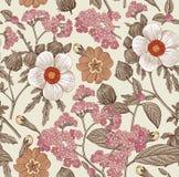 Nahtloses Muster Realistische lokalisierte Blumen Zeichnungs-Stich Vektor hibisc primavera Hibiscus des Weinlesehintergrundes hel lizenzfreie abbildung