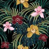 Nahtloses Muster, rosa Burgunder-Gelborchideenblume und grünes exotisches Palmenmonster verlässt lizenzfreie abbildung