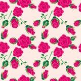 Nahtloses Muster Rose. Stockfotografie