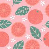 Nahtloses Muster Saftige Fruchtblätter und -blumen der rosa Pampelmuse auf schäbigem Hintergrund vektor abbildung