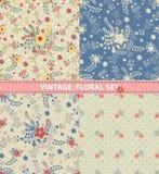 Nahtloses Muster-Set Blumen, Niederlassungen, Beeren im Retrostil Stockbild