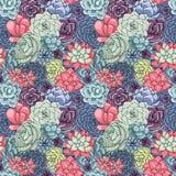 Nahtloses Muster Vektor Succulents Saftige Verzierung lizenzfreie abbildung