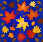 Nahtloses Muster verfasst vom bunten Herbstlaub Lizenzfreies Stockfoto